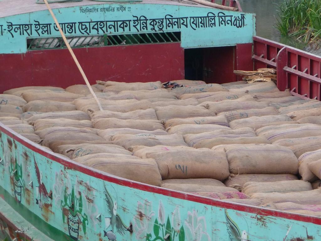 bangladesh-est-un-des-premiers-pays-producteurs-riz-riz-au-bangladesh-aspects-vie-quotidienne-1