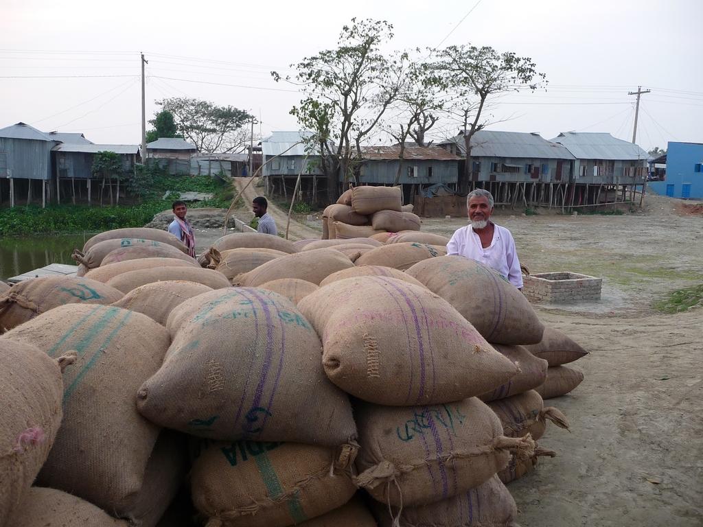 des-sacs-en-attente-chargement-riz-au-bangladesh-aspects-vie-quotidienne-1