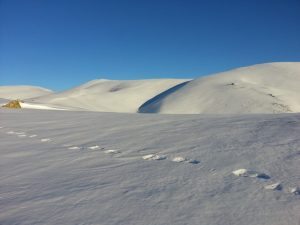 loin-foule-stations-ski-balade-cap-peyrehicade
