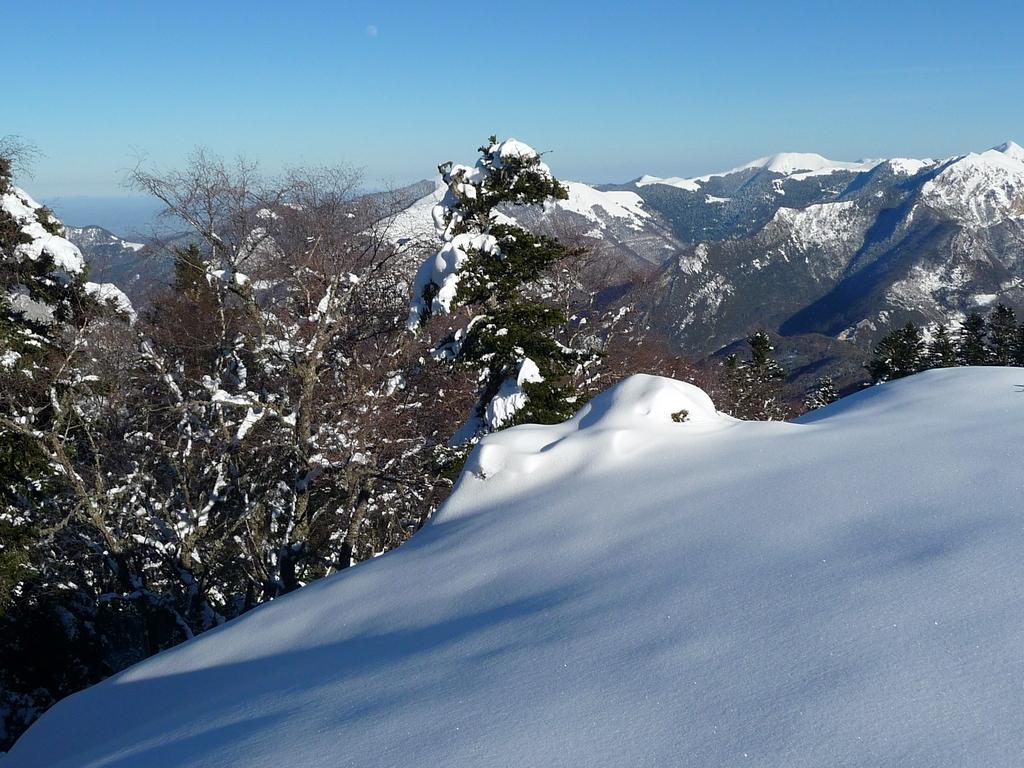 une-tres-bonne-qualite-neige-au-monne-rouye