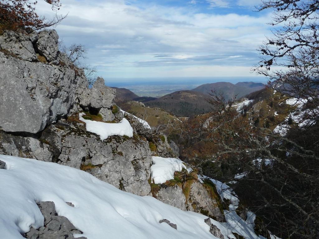 zone-rochers-en-foret-signal-bassia-par-tire-moureou