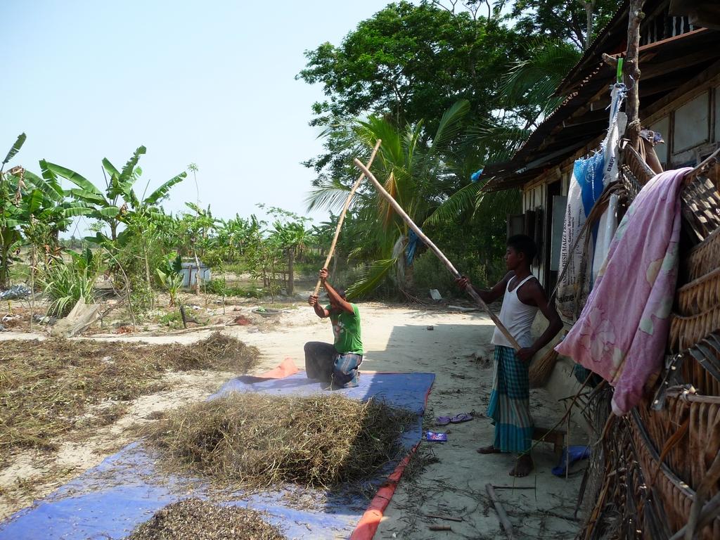 battage-dal-par-rubel-et-jamal-un-nouveau-voyage-chez-mes-amis-bangladesh
