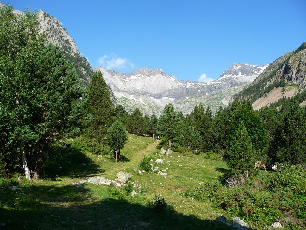 sur-chemin-approche-en-vallee-barrosa-regal-de-lis