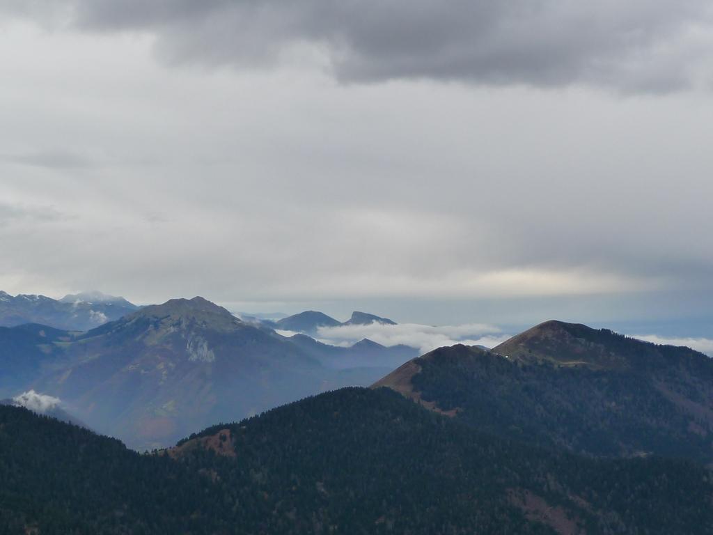 mauvais-temps-vient-plutot-ouest-vol-grues-cendrees-au-dessus-mont-aspet