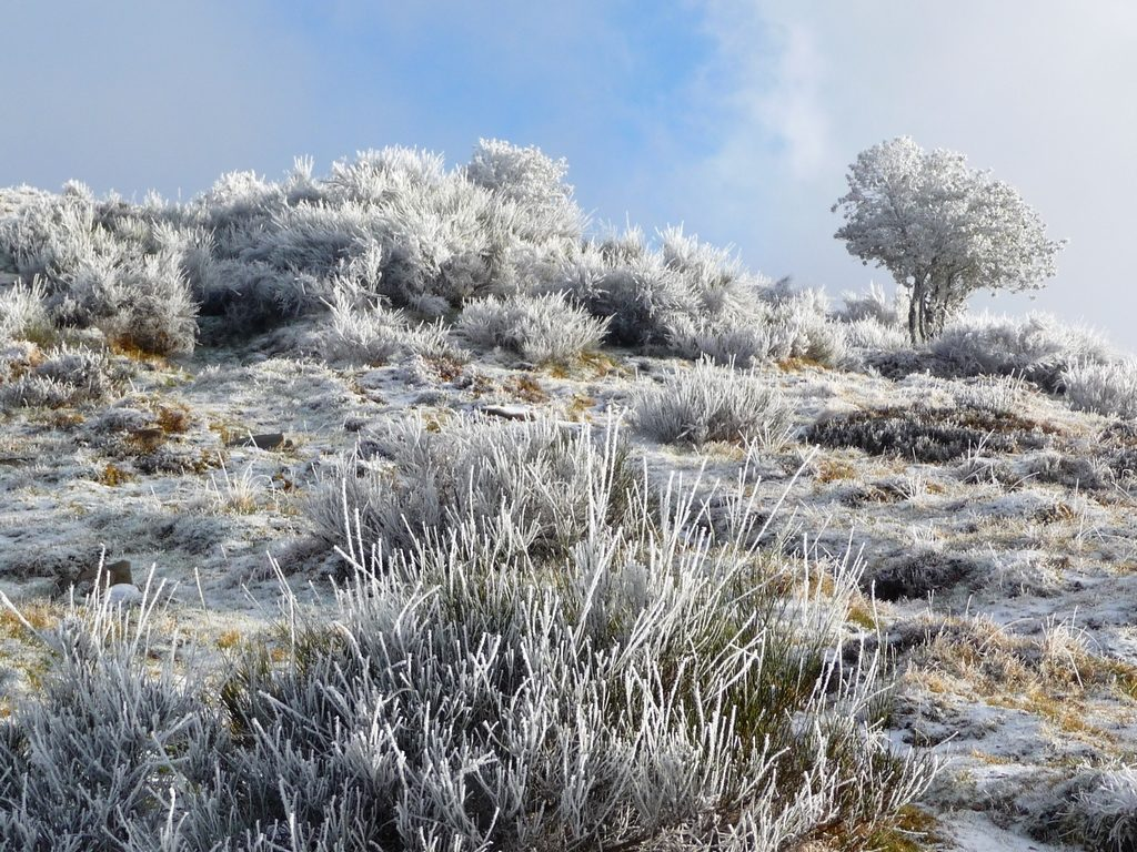 sol-recouvert-que-un-saupoudrage-neige-balade-givrante-vers-montaut