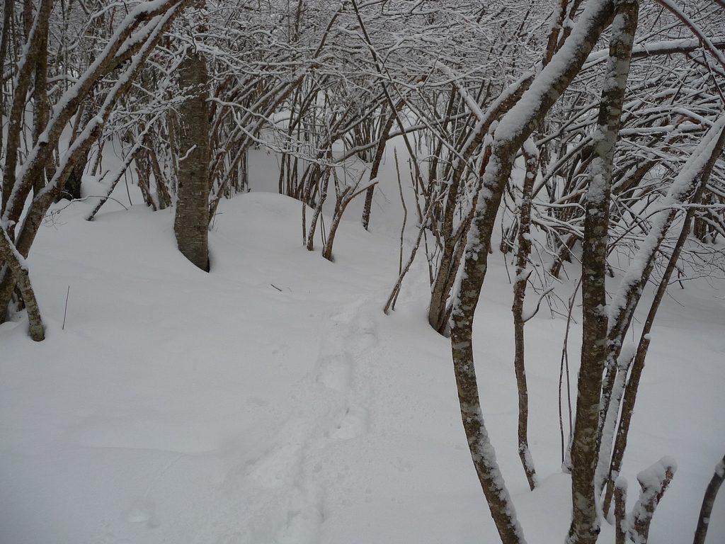 raquettes-grande-utilite-vallon-estiouere-sous-neige