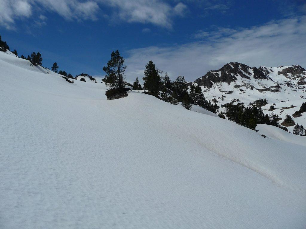 bonne-epaisseur-neige-destination-raquettes-vallon-estibere